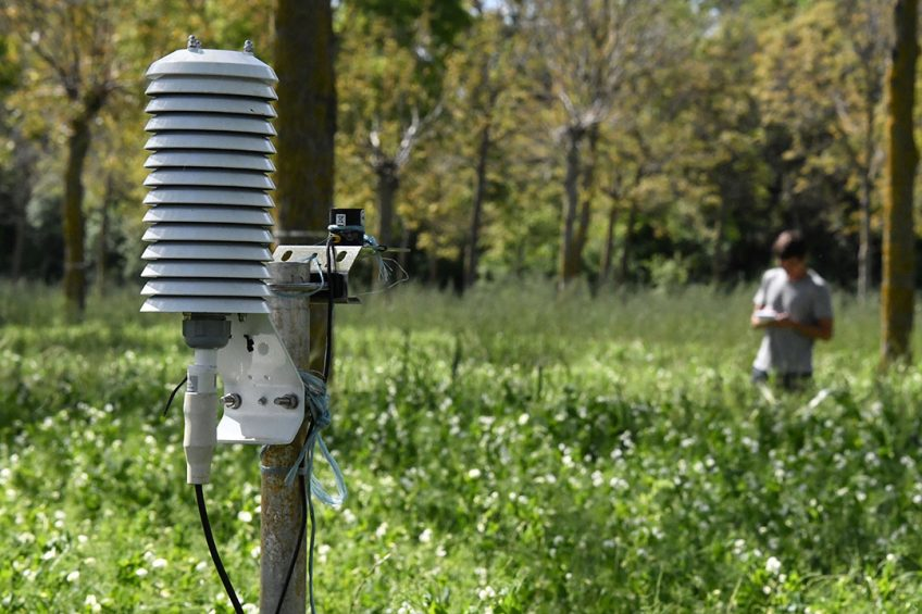 2019-05-16 11:51:40 In this photograph taken on May 16, 2019, a technician from France's National Institute of Agricultural Research (INRA), measures moisture content, air temperature and light rays in field of peas at the agroforestry centre of Restinclières, on the outskirts of Montpellier in southern France. Watched by imposing pines that protect against pests, grenache vines grow under the watchful eye of INRA researchers: Near Montpellier, the field of Restinclières, pioneer in agroforestry, attracts researchers from around the whole world . Pascal GUYOT / AFP