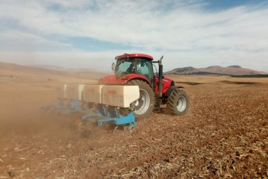 Varying seed and fertiliser rates cuts costs in South Africa
