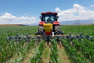 Not afraid to experiment with cover crops