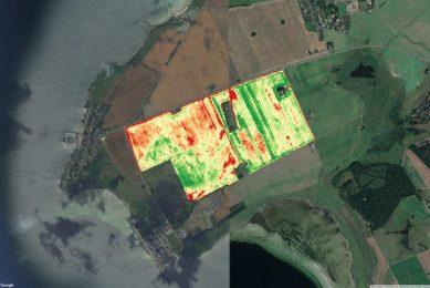 Reducing fertiliser usage by 40% using satellite imagery