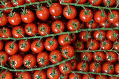 2014-06-13 13:35:55 A picture taken on June 13, 2014 shows cherry tomatoes in a local business, in Paris. AFP PHOTO / PIERRE ANDRIEU PIERRE ANDRIEU / AFP