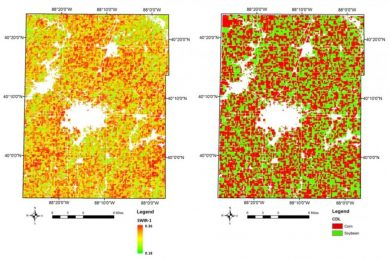 How to distinguish maize from soybean on satellite images