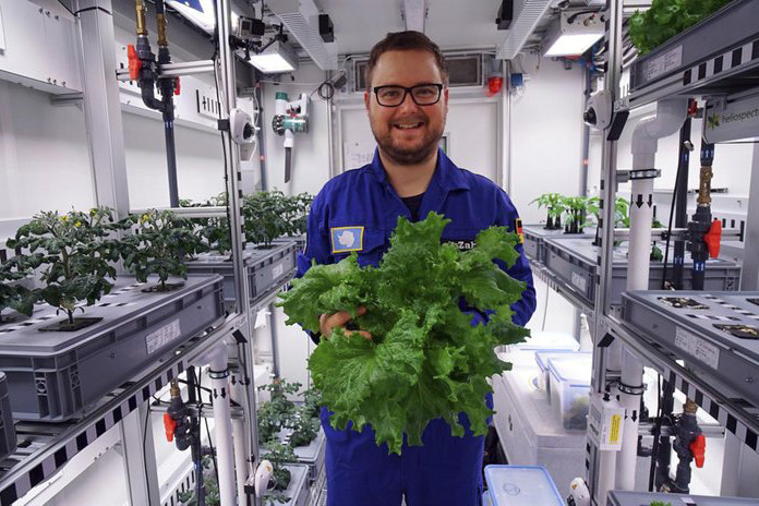 Germans grow first vegetables in Antarctic greenhouse