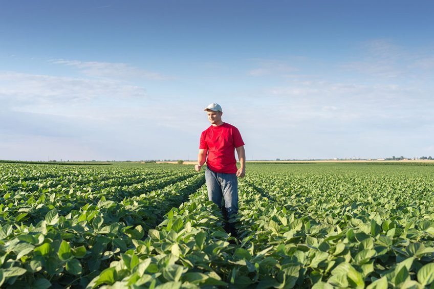 Operation Weed Eradication is to to help growers improve yields and solve challenges for their ag operations. - Photo: Business Wire