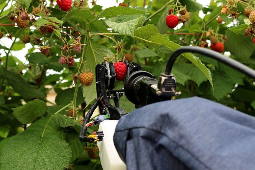Photo: Fieldwork Robotics/University of Plymouth