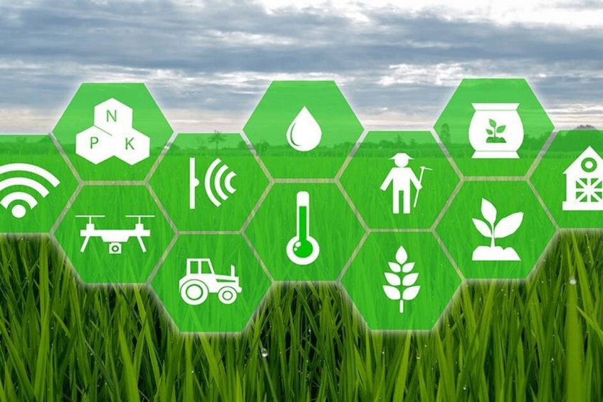 India and United States collaborate on AI in agriculture