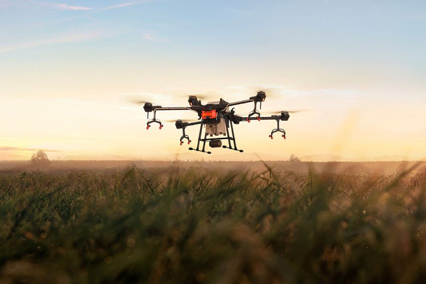 Regulations for drones heavier than 25 kg are much more demanding. Consequently, the more popular light drones have a tank capacity up to about 16 litres. These smaller drones are also easier to handle and transport. - Photo: DJI