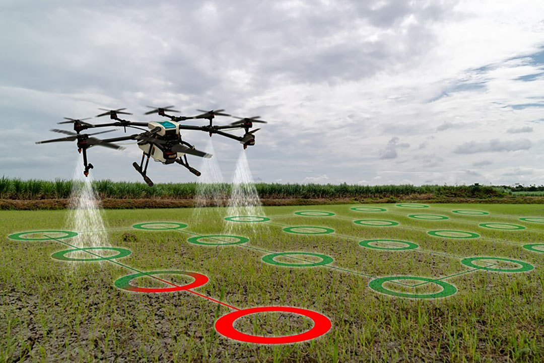 Covid-19 has been a catalyst for innovation in the agribusiness sector.