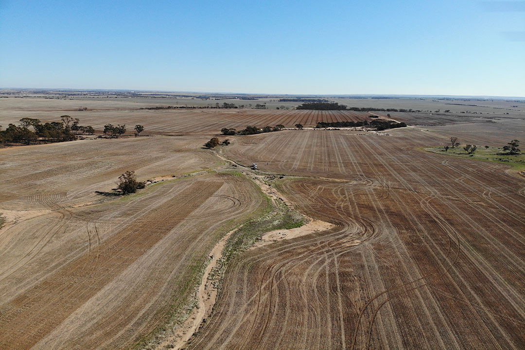 Brad Jones and his wife Kate run a 11,000 hectare broadacre farm near Tammin in Western Australia. - Photo: Reinder Prins