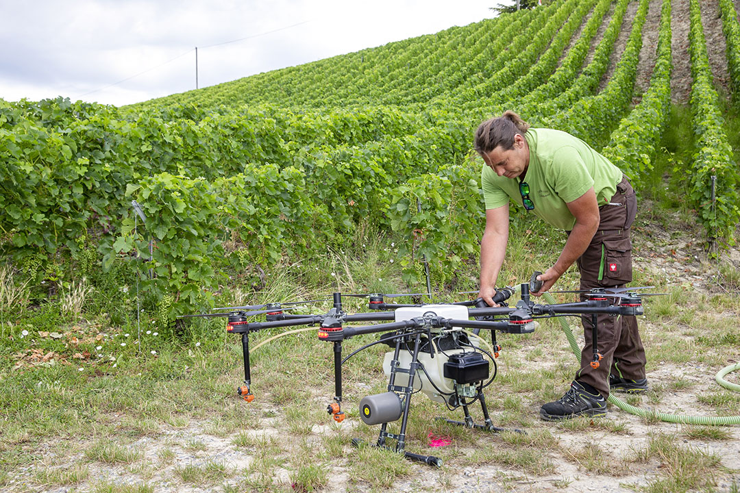 With the ability to apply targeted applications autonomously and with pin-point accuracy, drones are ideal for vines, fruit, specialist row-crops and orchards.  - Photo: EPA