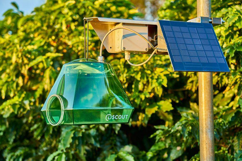 Pessl's automatized iSCOUT pest trap. - Photo: Pessl Instruments