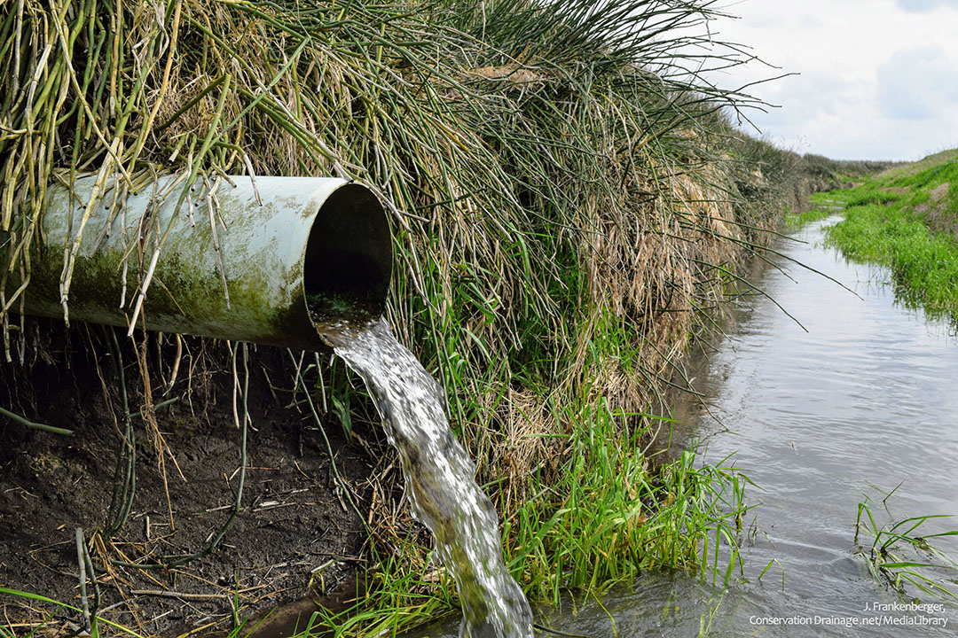 Water flows out of a tile drain and into a nearby ditch in Indiana. Although draining waterlogged fields improves crop growth, drainage water carries nitrate, a water contaminant. - Photo: J. Frankenberger