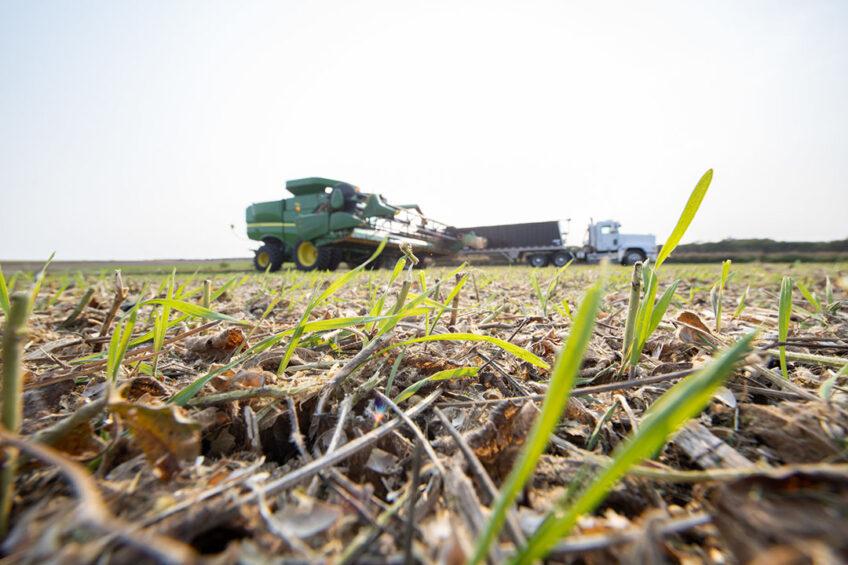 The Cargill RegenConnect program is part of the company's 10 million acre regenerative agriculture commitment. - Photo: Cargill