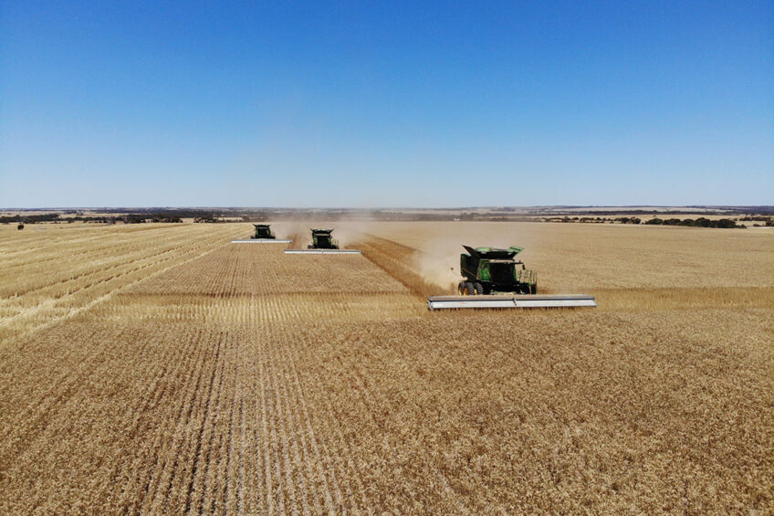 The first module for the N-GAUGE mobile App allows CropScan 3300H users to manage the quality and quantity of grain as it is harvested and then stored in the field and on farm. - Photo: Reinder Prins