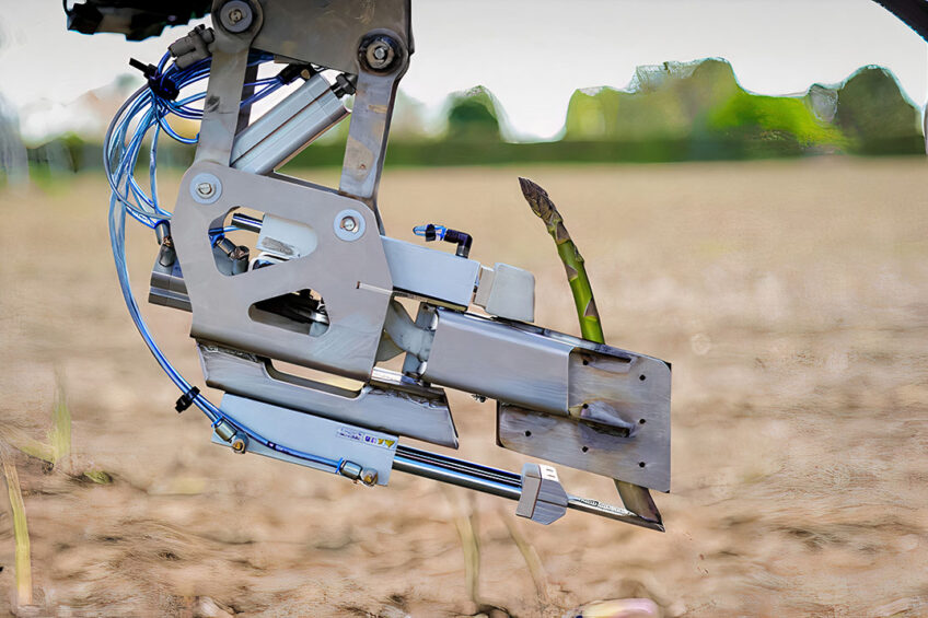 The project builds on a prototype harvester robot developed by University of Waikato researchers with Robotics Plus. - Photo: Robotics Plus
