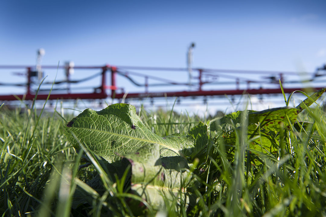 The Agrifac sprayer can control site-specific weeds. Photo Mark Pasveer