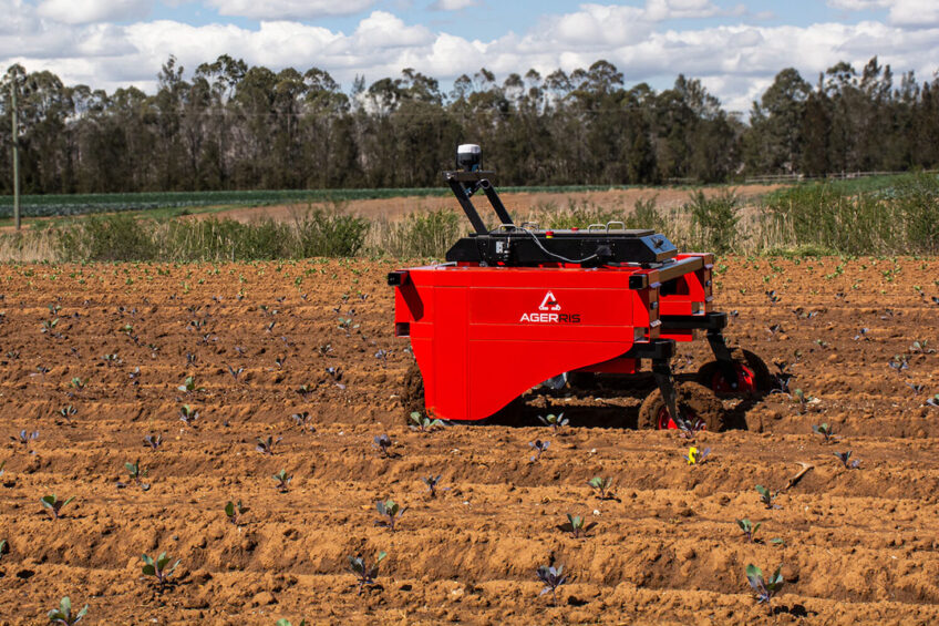Digital Farmhand can precisely and mechanically remove weeds as it travels along the vegetable beds. - Photo: Agerris